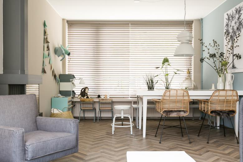 JASNO blinds living room grey